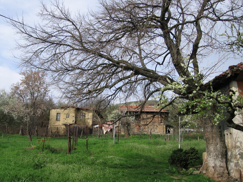 Пролет в Коркина