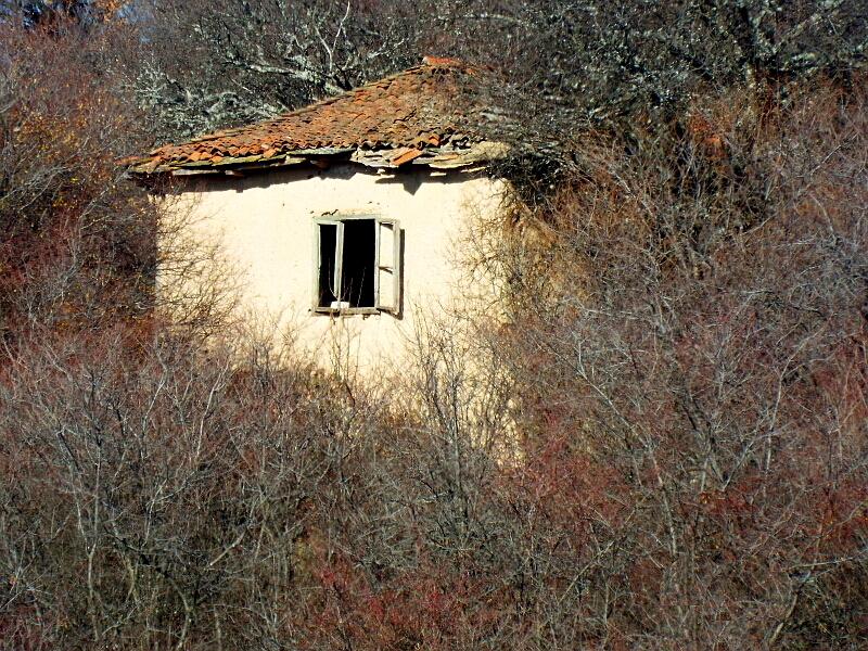 Самотна манастиришка къща, днес огаснало огнище, превзето от гората