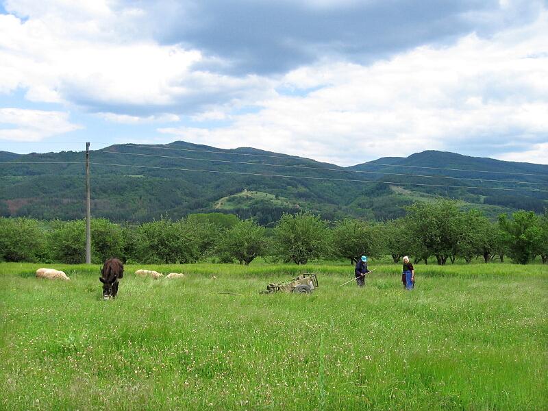 Красив пейзаж от околността на Ваксево, но и тревожна картина, разкриваща основния трудов контингент в селото