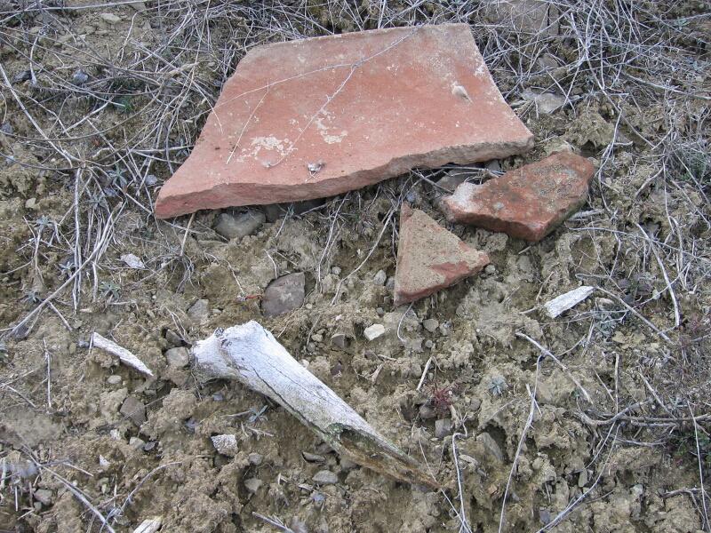 """Керамични фрагменти и парчета от човешки кости в м. """"Кралев дол"""", Коркинско"""