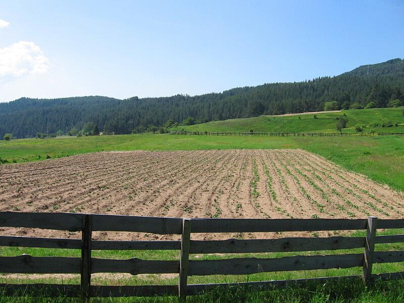 Високопланинско земеделие