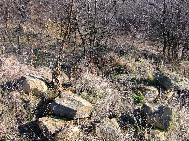 """Руини от стари сгради в м. """"Тръсеница"""""""