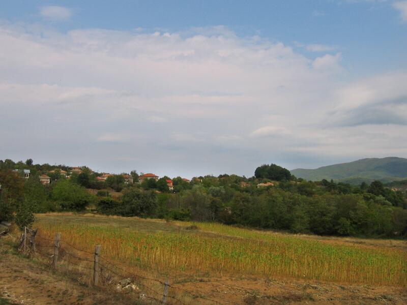 Изглед на с. Черничево, от юг