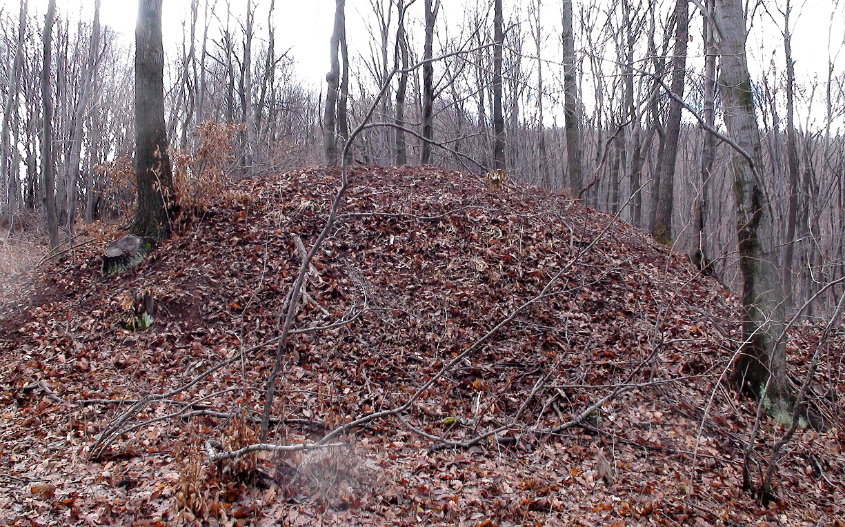 Надгробна могила в Голо бърдо над Кралев дол