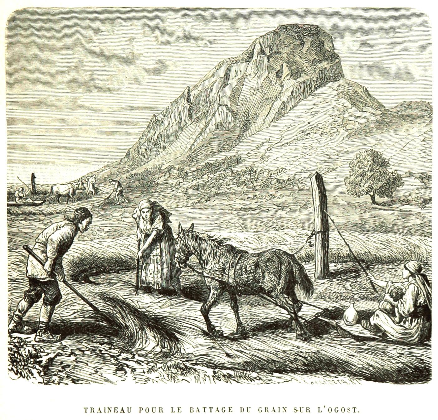 Ежедневие от робското минало на българина - вършитба на гувното (хармана), гравюра на Феликс Каниц